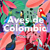 Aves de Colombia - PODWAY